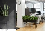 Tips for Surviving Your Office Remodel